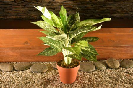 DIEFFENBACHIA ARTIFICIAL PLANT